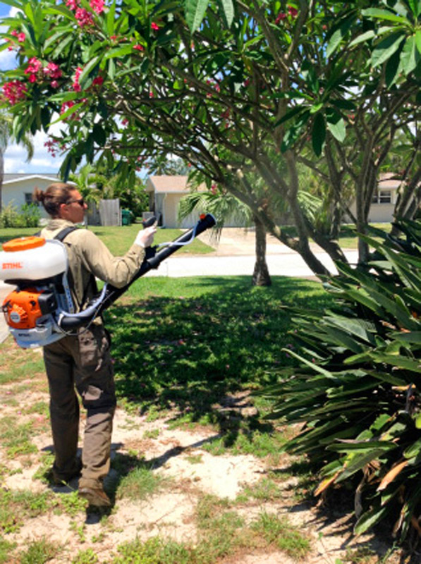 Extermination Station treating trees for mosquitoes elimination
